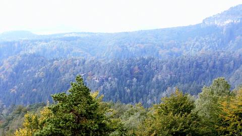 Panorama of Czech Switzerland Footage