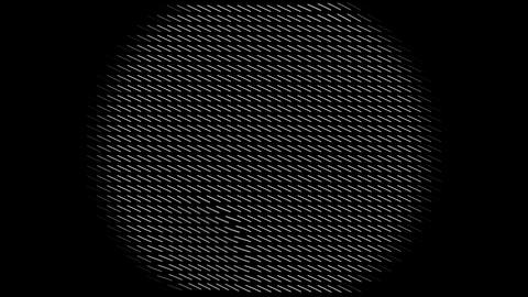 circle w shortlines Animation