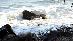 Waves on the rock Stock Video Footage