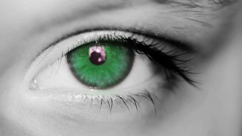 Eye Macro Shot Stock Video Footage