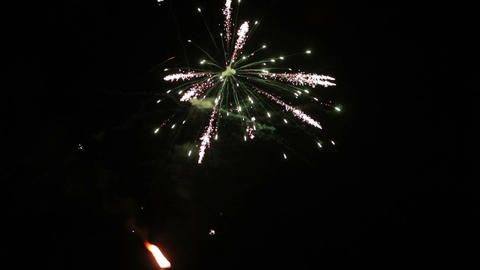 Firework on dark sky Stock Video Footage