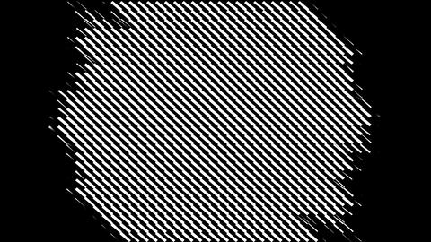 Trangle Grid w M Animation
