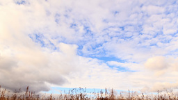 Clouds over dry grass. From bottom to top. Time La Stock Video Footage