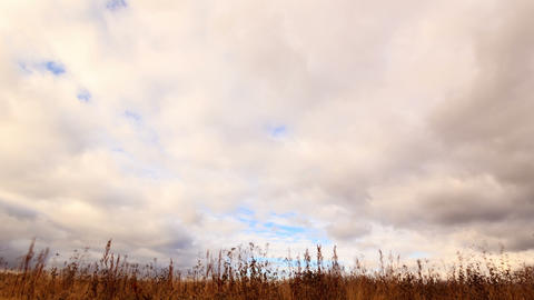 Clouds over dry grass. Time Lapse Footage