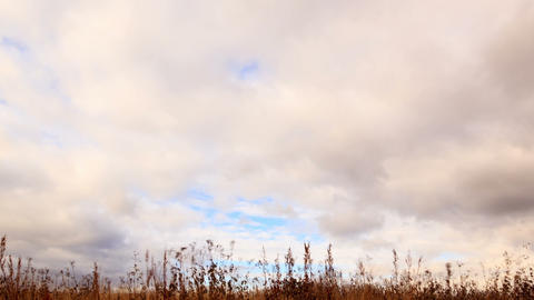 Clouds over dry grass. Panarama. Time Lapse Footage