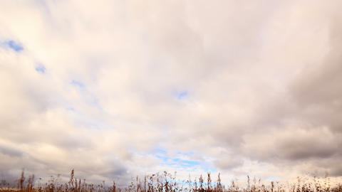 Clouds over dry grass. From top to bottom. Time La Stock Video Footage