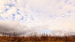 Clouds over dry grass. From top to bottom. Time La Footage