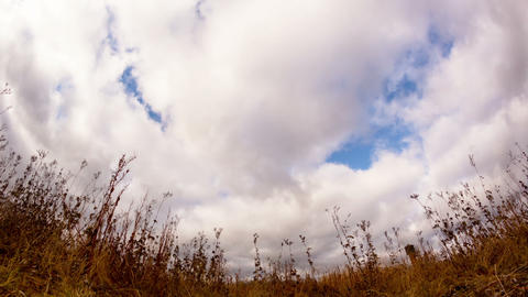 Clouds over dry grass. Fisheye lens. Time Lapse Footage