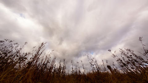 Clouds over dry grass. Fisheye lens Time Lapse. 4K Stock Video Footage