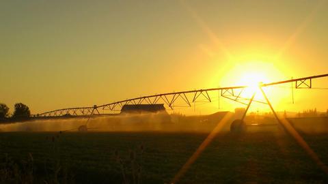 Agriculture Field Sprinkler Stock Video Footage