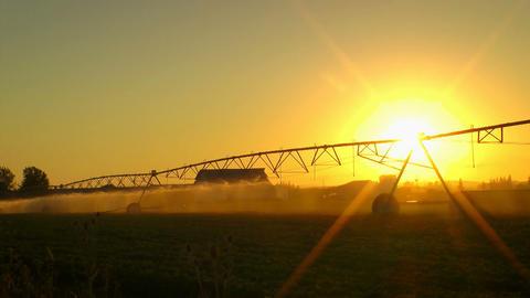 Agriculture Field Sprinkler Footage