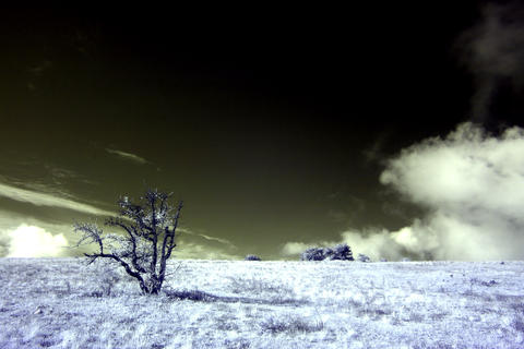 4K. InfraRed landscape: Movement of the clouds on Stock Video Footage