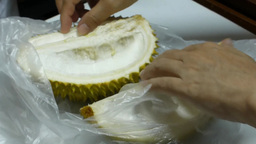 Close-up Of Opening Up A Durian stock footage