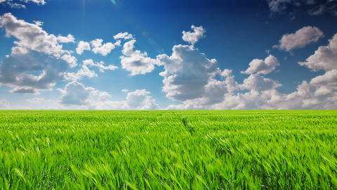 green field and cloudy sky Stock Video Footage