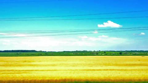 View From The Train Window. Summer Landscape stock footage
