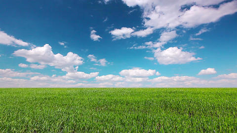 green field and cloudy sky Footage