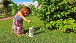 Little girl play with cat in green garden Footage