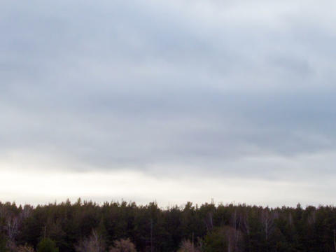 Clouds quickly rush on the sky. Time Lapse Footage