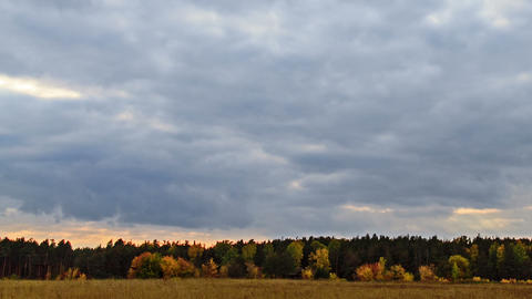 Rays of sun on a background autumn landscape Stock Video Footage
