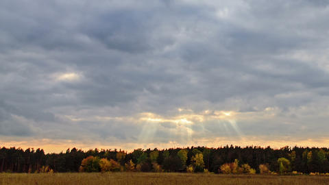 Rays of sun on a background autumn landscape Footage