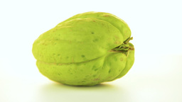 Chayote stock footage
