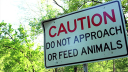 """Caution Do Not Feed Animals"" Sign - Low Angle stock footage"