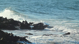 Sea view Animation