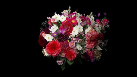 Broken bouquet Stock Video Footage