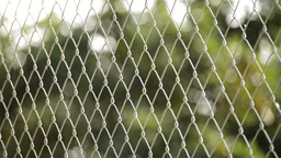 Wire Fence stock footage