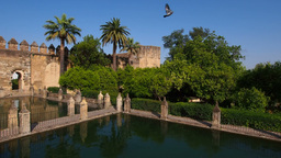 Alcazar in Cordoba, Spain Stock Video Footage