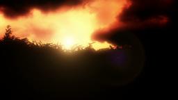 Rural landscape sunrise Stock Video Footage
