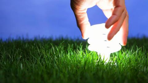 Energy saving light bulb Stock Video Footage