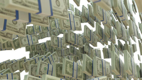Wealth: dollar cash slow motion scattering on whit Animation