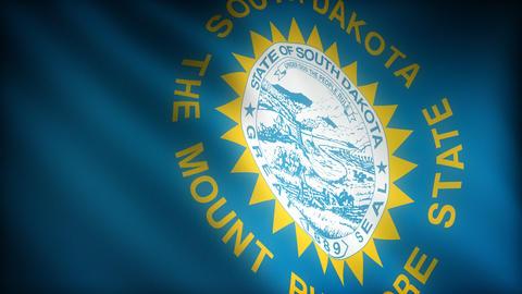 Flag of South Dakota Stock Video Footage