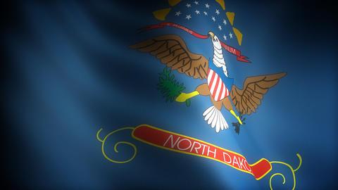 Flag of North Dakota Stock Video Footage