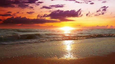 Marine Sunset stock footage