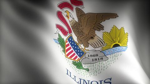 Flag of Illinois Stock Video Footage