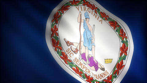 Flag of Virginia Stock Video Footage