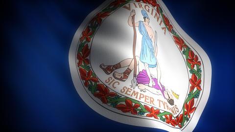 Flag of Virginia Stock Video Footage