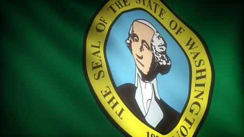 Flag of Washington Stock Video Footage