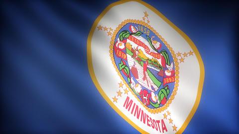 Flag of Minnesota Stock Video Footage
