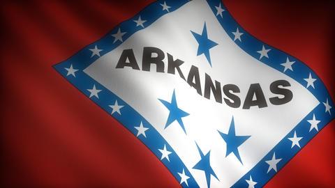 Flag of Arkansas Stock Video Footage