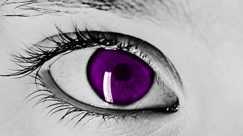 Eye Closeup Shot purple Stock Video Footage