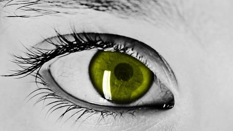 Eye Close-Up Shot Yellow Stock Video Footage