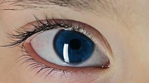 Blue Eye Macro Stock Video Footage