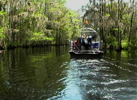 View from an Airboat (13) Stock Video Footage