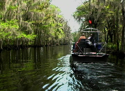 View from an Airboat (13) Footage