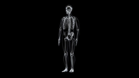 H XRay A Stock Video Footage