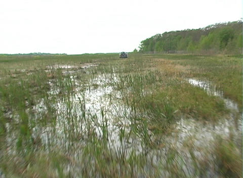 View from an Airboat (21) Stock Video Footage