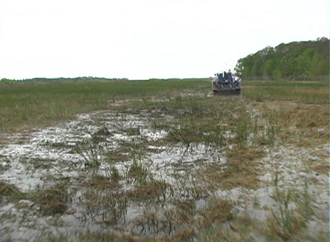 View from an Airboat (21) Footage